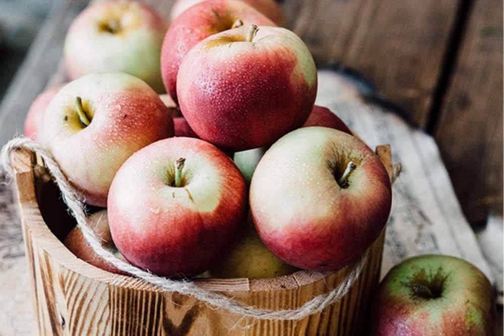 Apfel-Aepfel-Äpfel-im-Herbst_ferienwohnung-schlitz.de